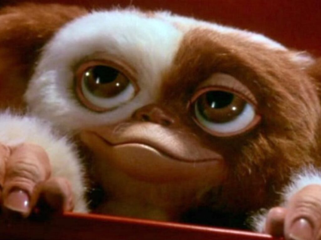 A furry creature, half white and half brown, with very large eyes and a smiling face, with two hands.