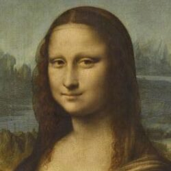 the head of the Mona Lisa - a woman smiling enigmatically.