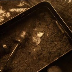 "screenshot from the Tarkovsky film ""stalker"". A shallow tin filled with dirt adn other objects buried in the dirt - coins, maybe a screwdriver."