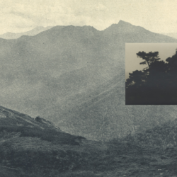 Monochrome photograph by Feiyi Wen of a mountainous landscape. To the right of centre is a smaller image imposed in with a detail of a tree, appearing as though it is a zoom of a detail of the landscape in the wider image.